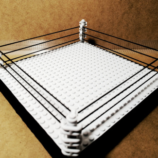 Image of: MCW: Official wrestling ring.