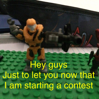 Image of: The contest