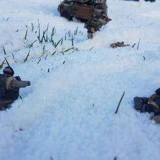 "Image of: ""The Winter Offensive"""