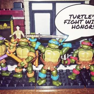 TURTLES FIGHT WITH HONOR