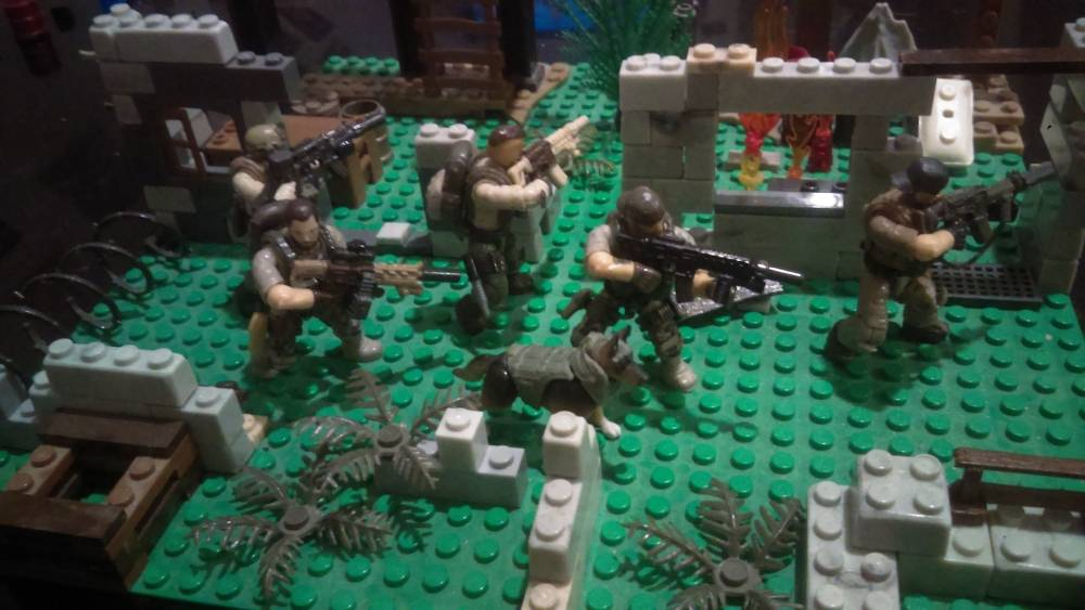 Seal team in action !!!