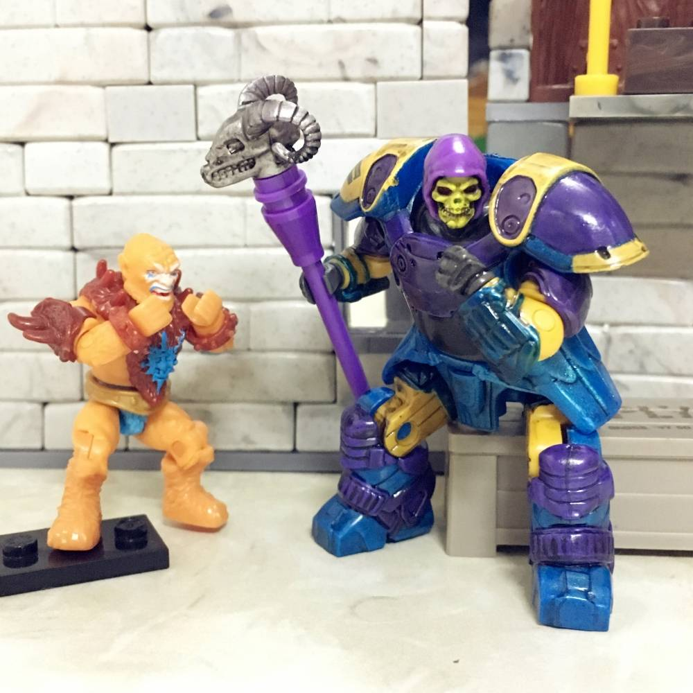 Image of: Reinforced Skeletor