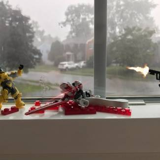 Image of: Windowsill Showdown