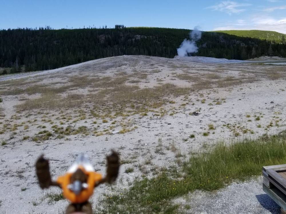 Image of: Y-Pose Wednesday Yellowstone dominance