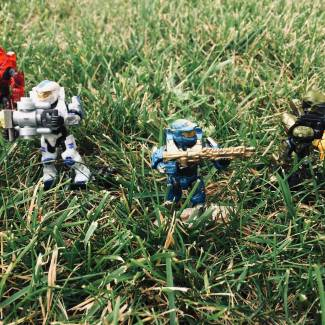 Image of: Spartans in the grass...