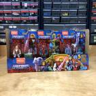 MCX Heroes Masters of the Universe in Package Look
