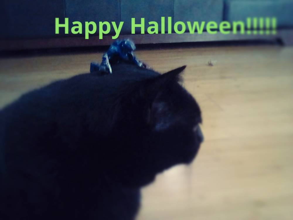 Image of: Happy Halloween!!