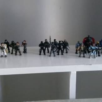 Image of: All my wasteland figs