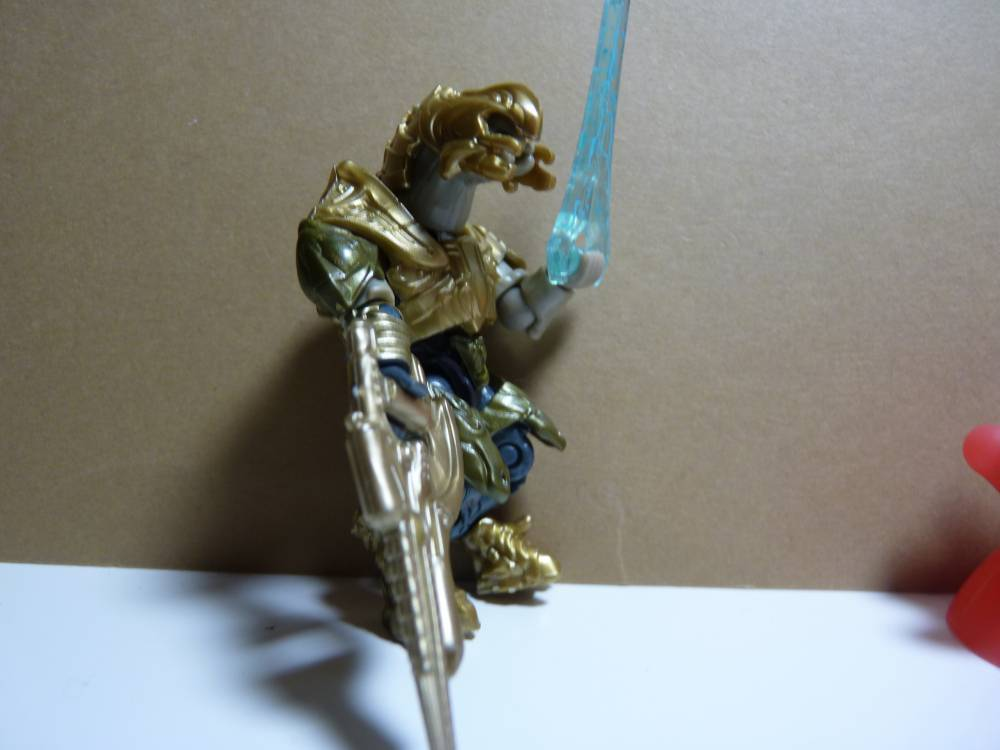 Image of: Sangheili rogue