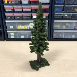 Image of: Tips and Tricks: How To Build Trees