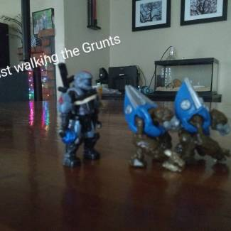 Image of: Walking the Grunts