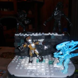 Image of: AVP battle