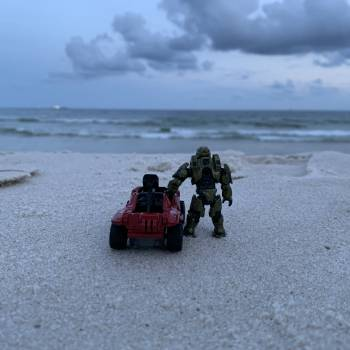 Chief and Minihog at the Beach