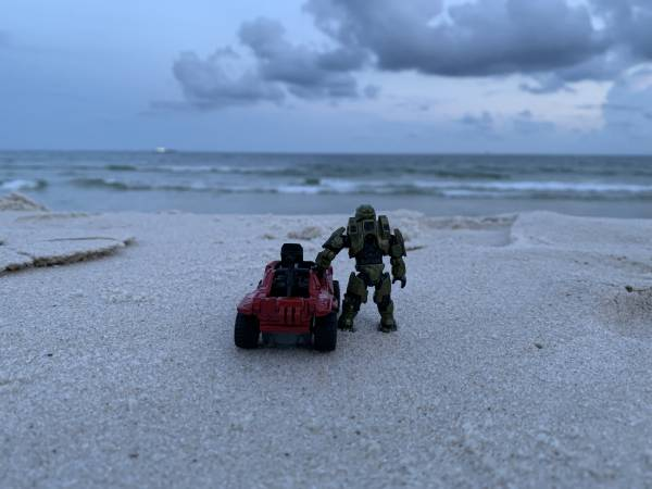 chief-and-minihog-at-the-beach