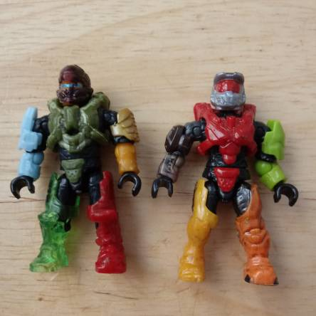 My brothers halo figs