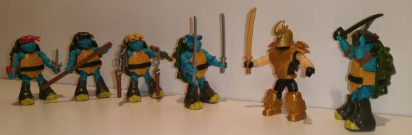 training-time-my-new-turtles