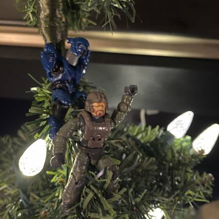 Hanging out in the Christmas tree!