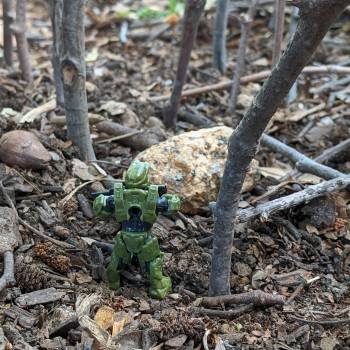 Master Chief in the forest.