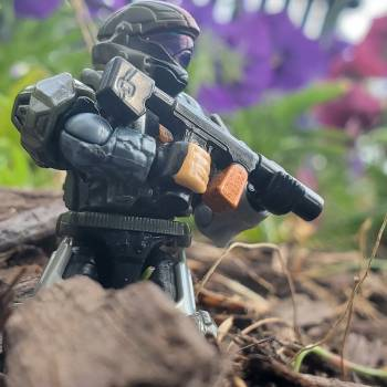 Scouting by the flowers.