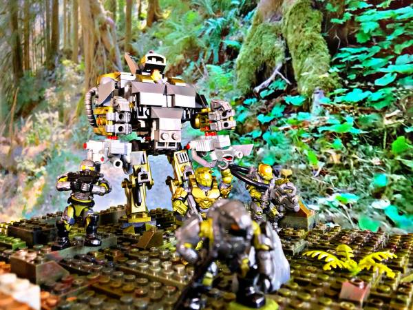 patrolling-in-the-woods-and-daily-q-5